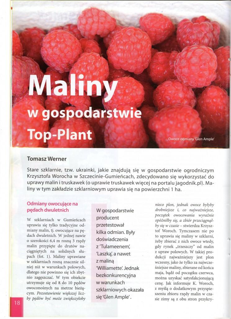 Artykul-o-KW-maliny-I12XXI001