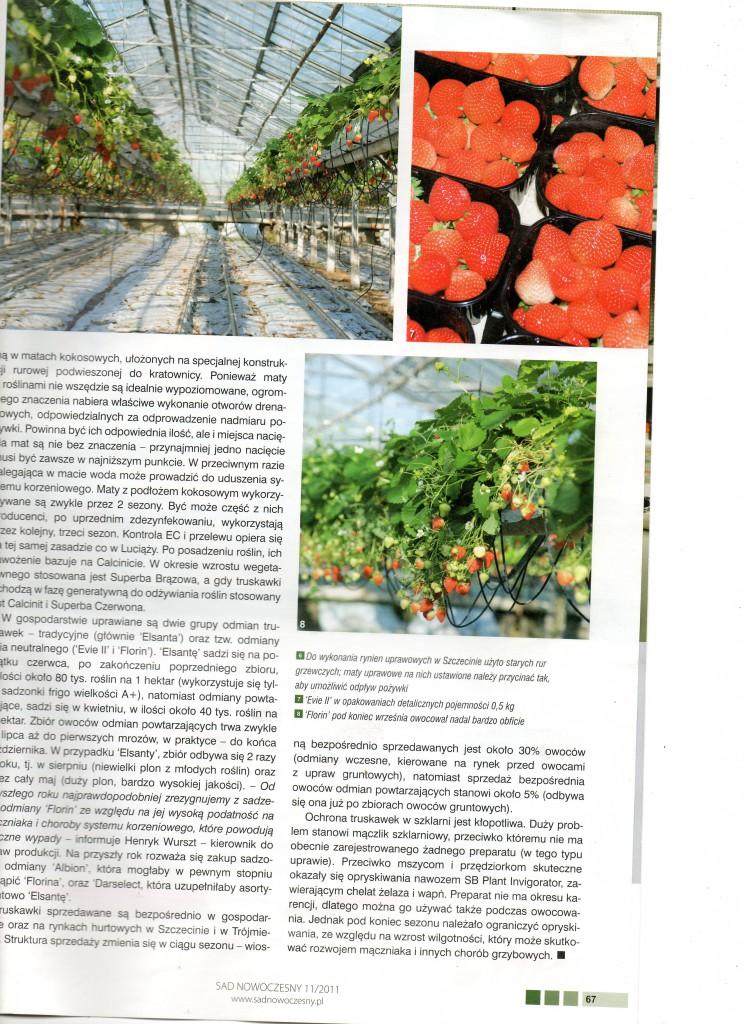Artykul-o-KW-z-SadNowoczesny-XI11XXI002